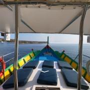 neptune89 deck